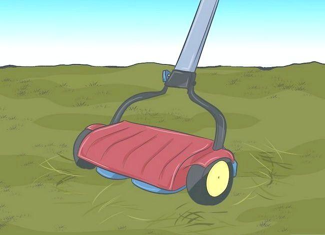 कैसे एक घास काटने की मशीन के साथ गीली घास बनाने के लिए