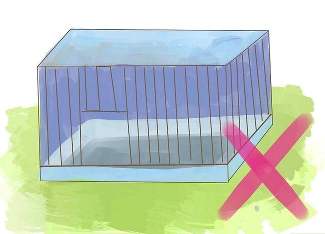 कैसे अपने नए gerbil के लिए एक आरामदायक घर बनाने के लिए