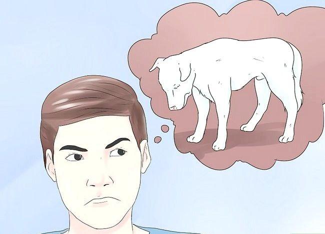 एक कुत्ते में हमले के लक्षणों की पहचान कैसे करें