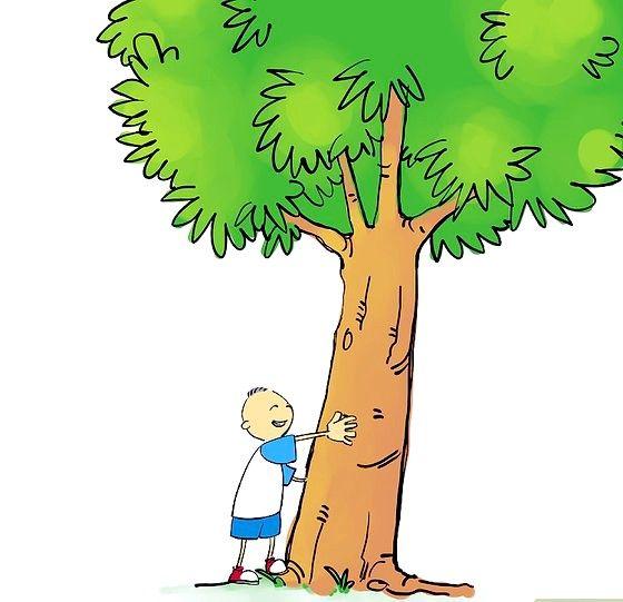 02 शीर्षक वाली छवि पेड़ पर फर्म की समझ प्राप्त करें। चरण 02
