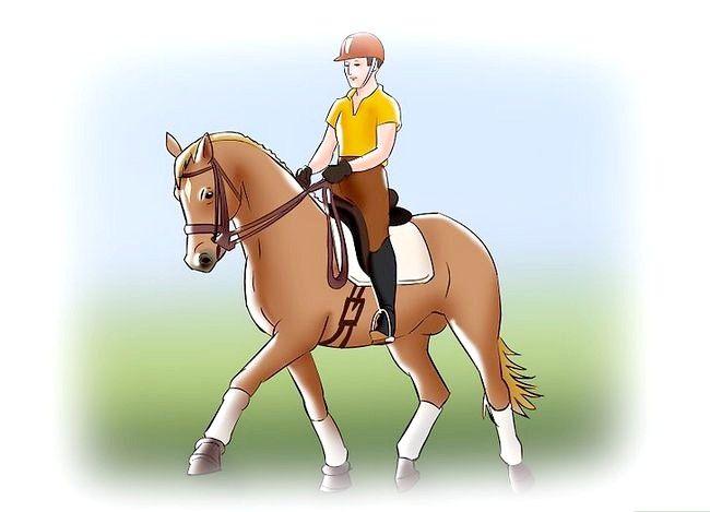 कैसे घोड़े पर घोड़े पर चलना